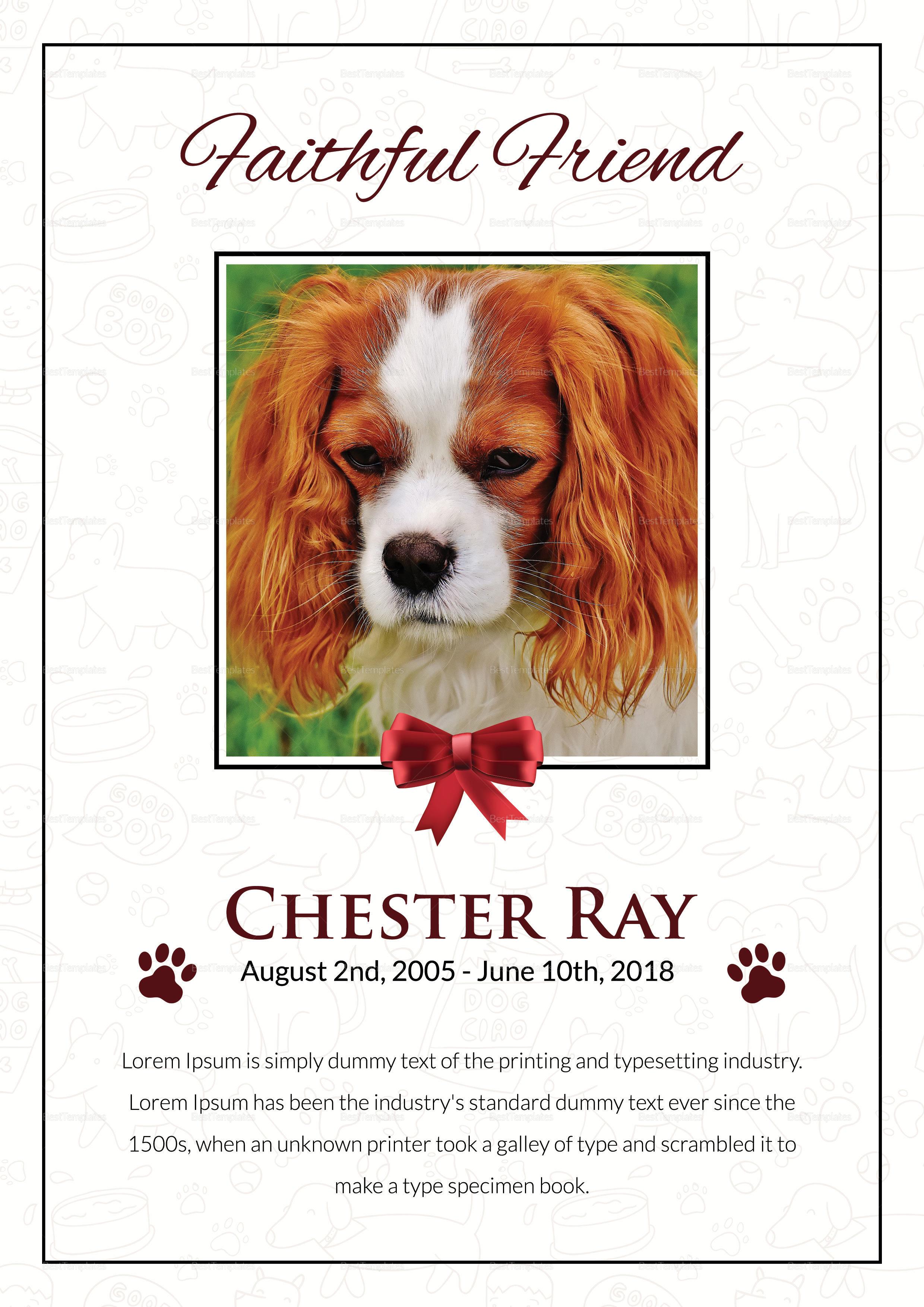 Premium Pet Funeral Program