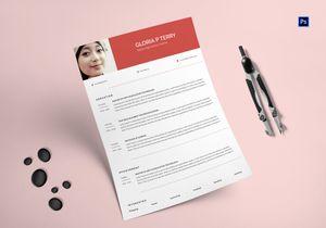 /5545/Trendy-High-School-Teacher-Resume