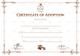 Sample Adoption Certificate Template