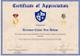 Army Certificate Of Appreciation Design Template
