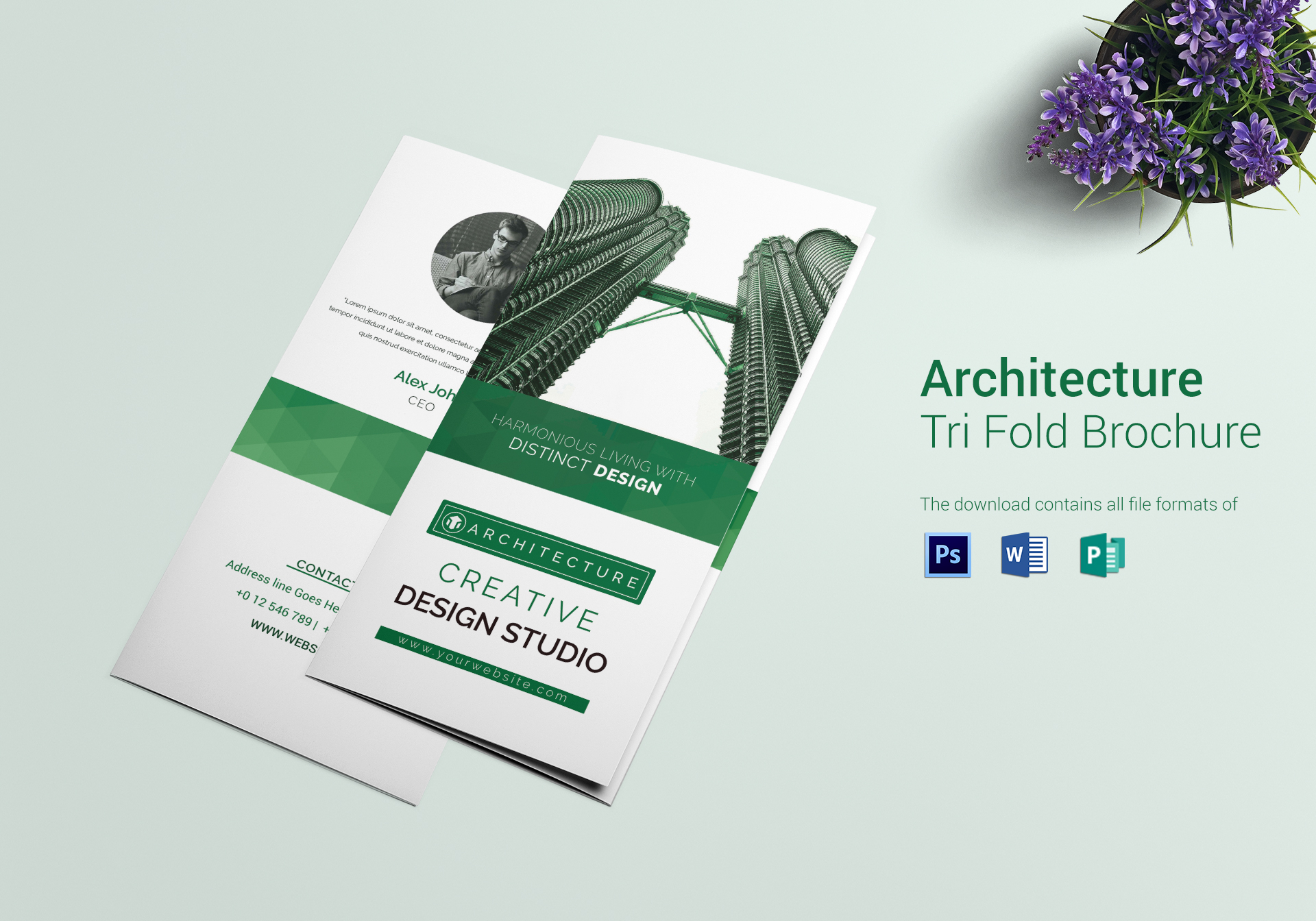 architecture   interior designer tri fold