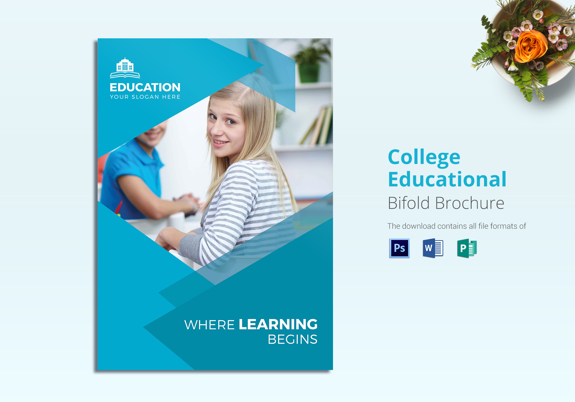 College Educational Brochure