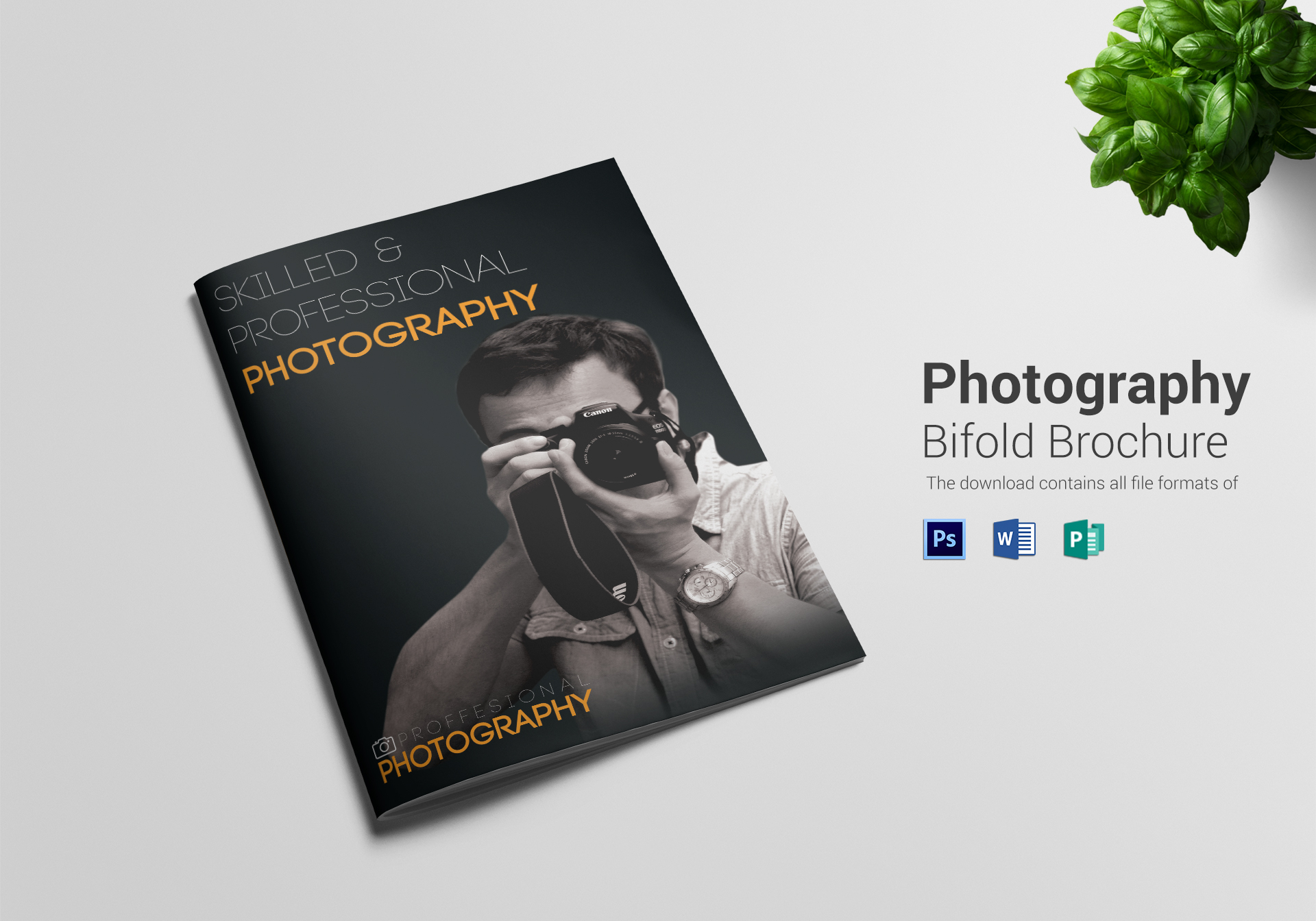 photography a4 bifold brochure design template in psd word publisher