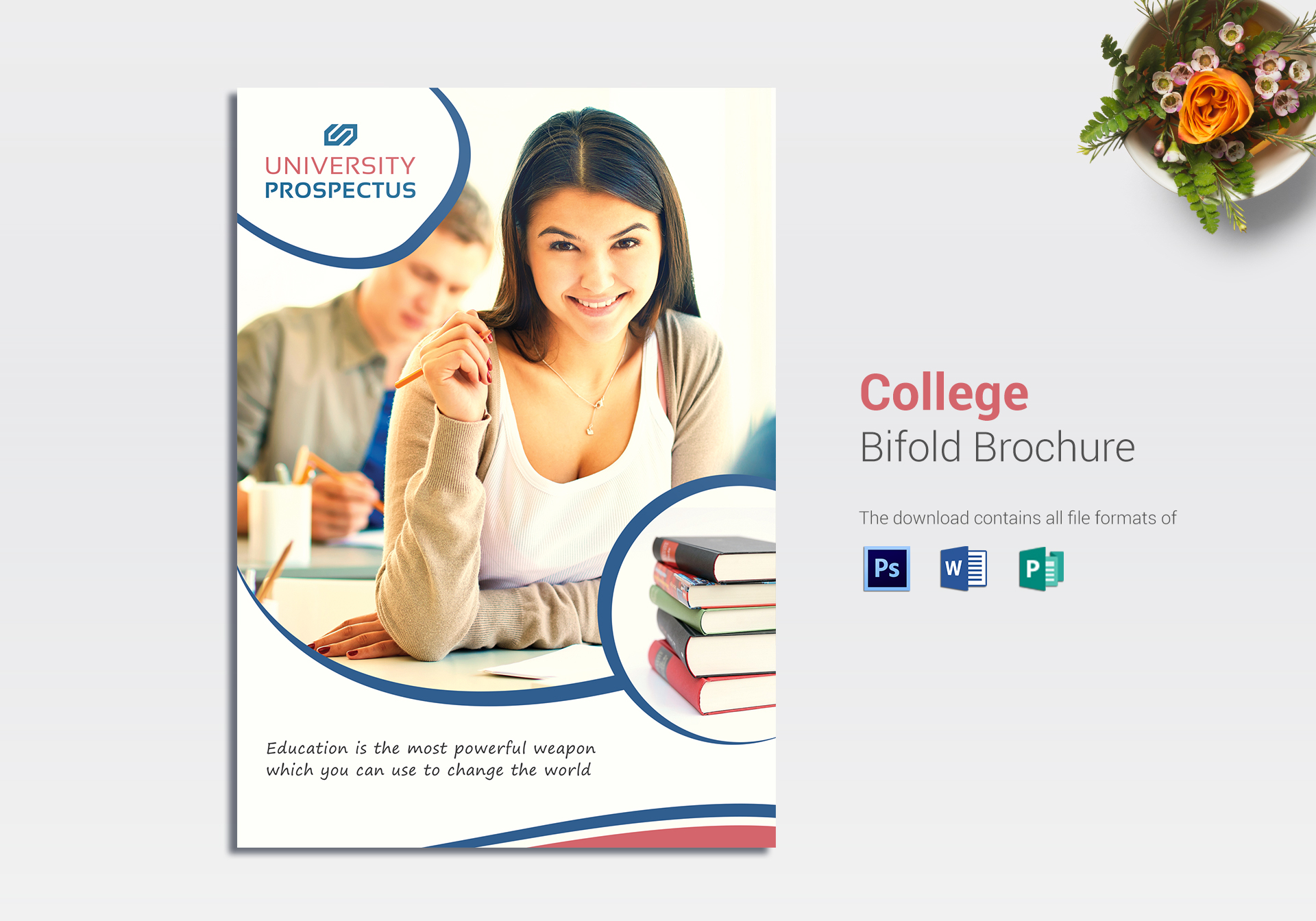 College Bi Fold Brochure Template