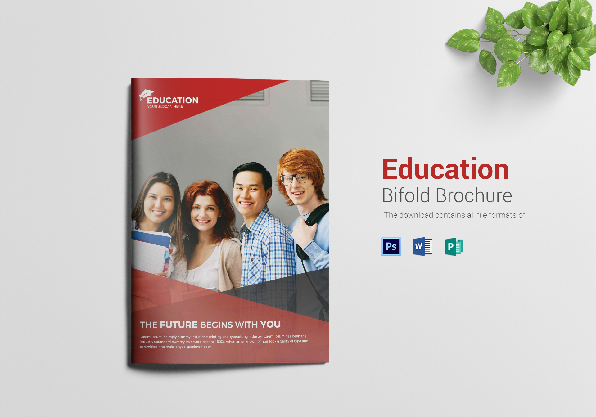 Higher Educational Brochure