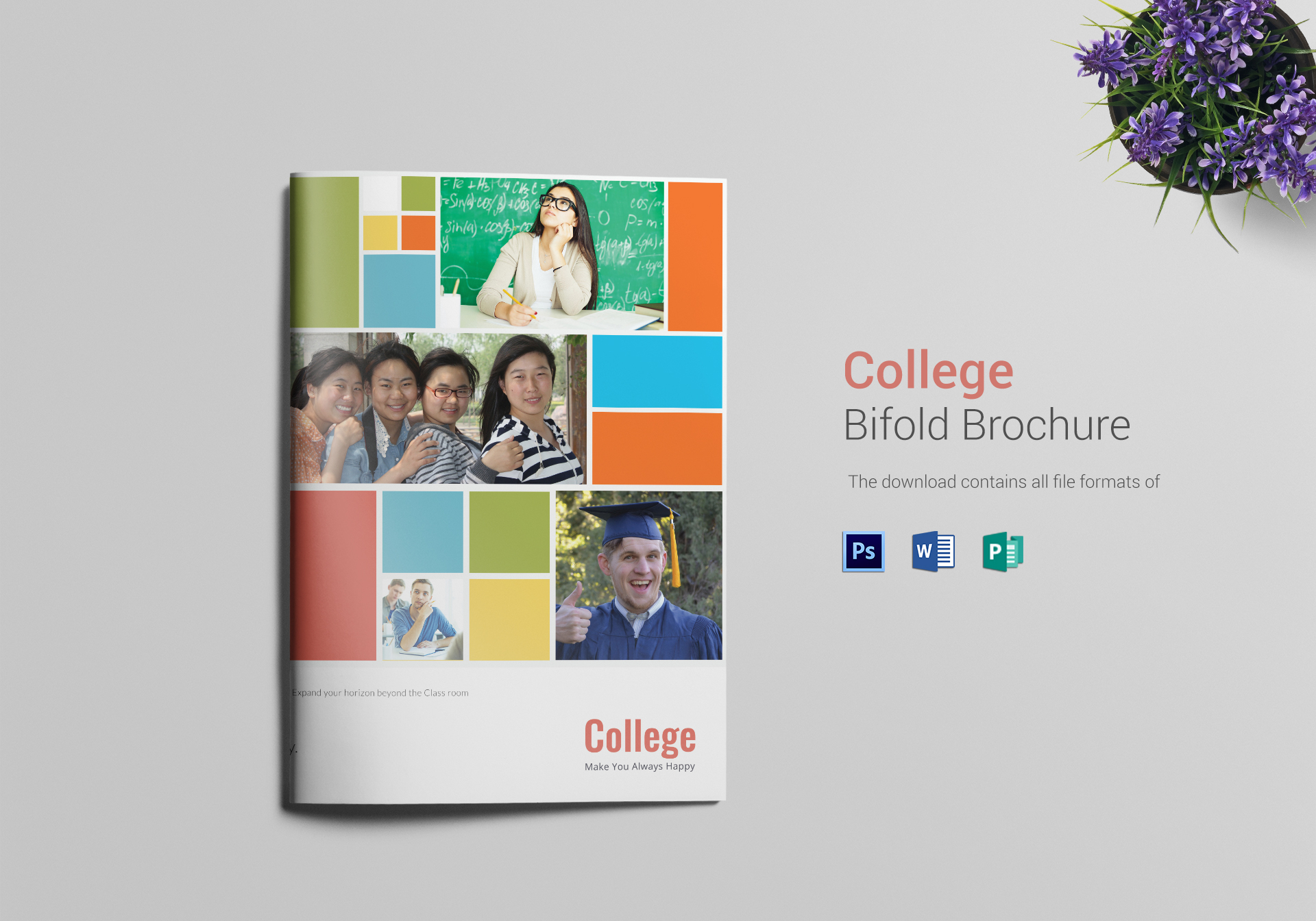 University - College Bi-Fold Brochure Template