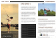 Golf Tri Fold Brochure Design Template