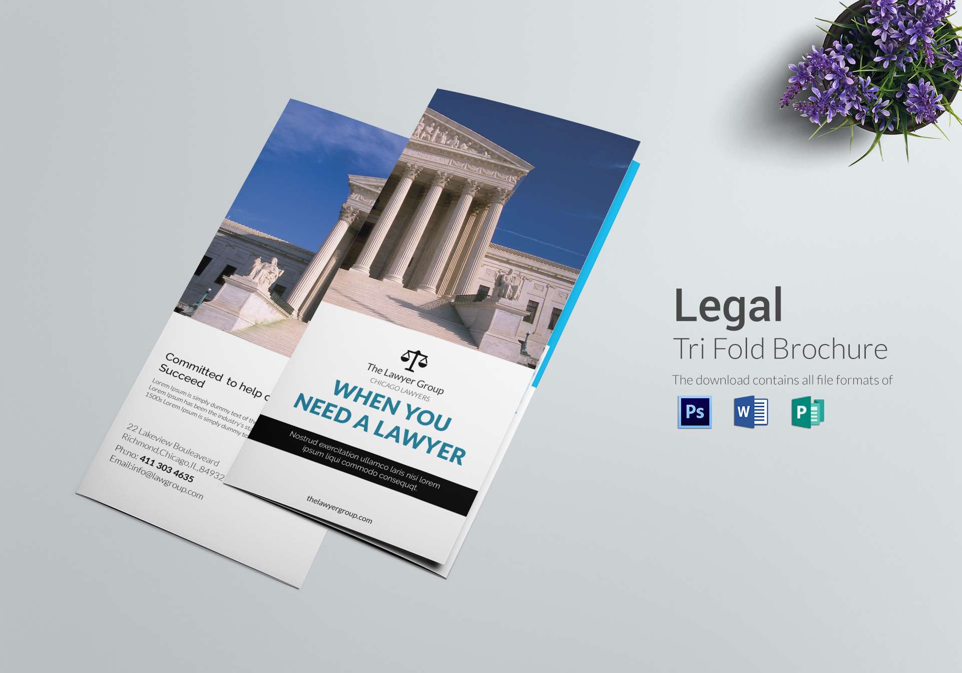Legal brochure tri fold design template in psd word for Tri fold brochure templates