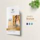 Jewellery Bi Fold Brochure