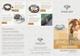 Jewellery Tri Fold Brochure Template