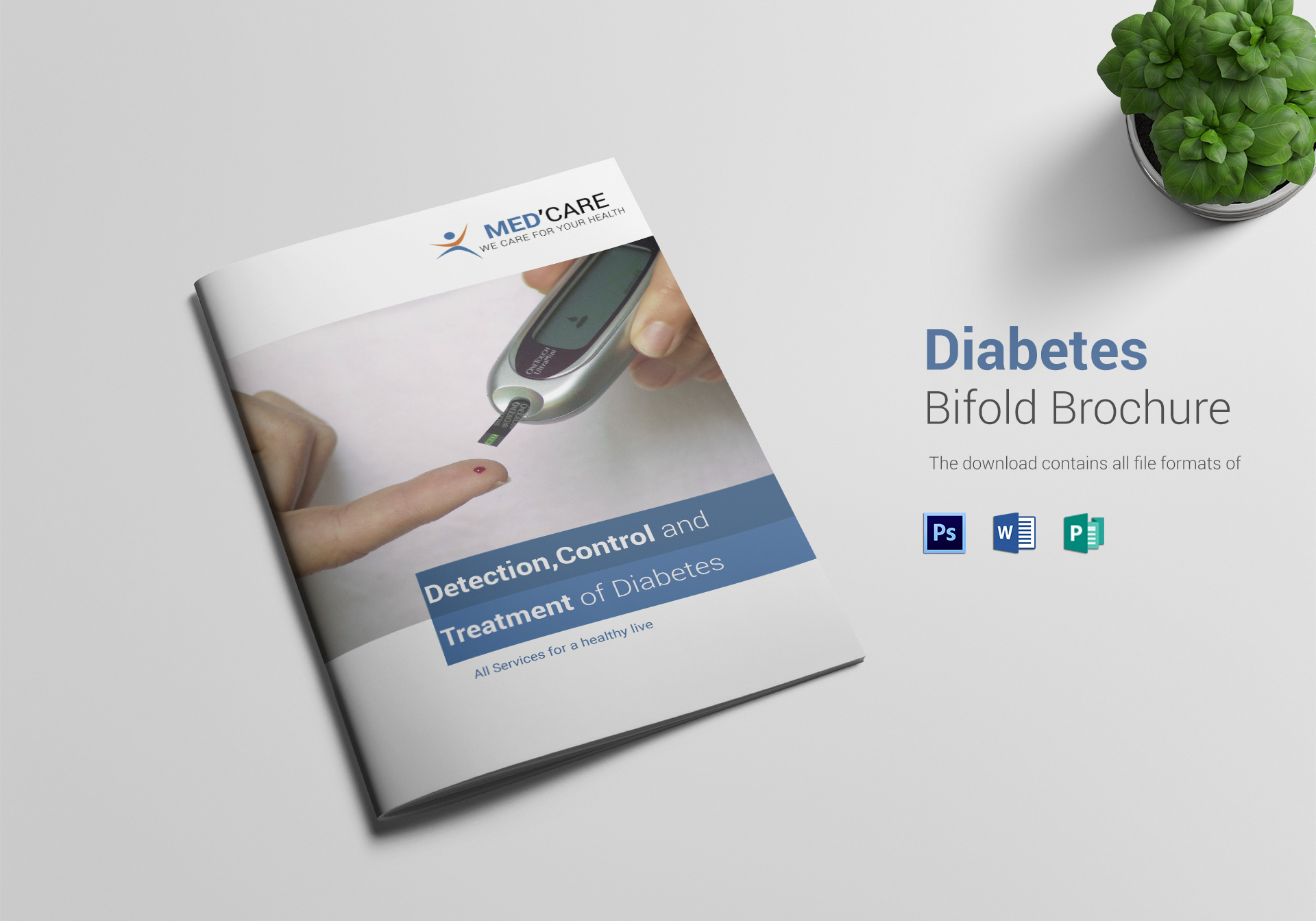 Diabetes Bi Fold Brochure Design Template ...