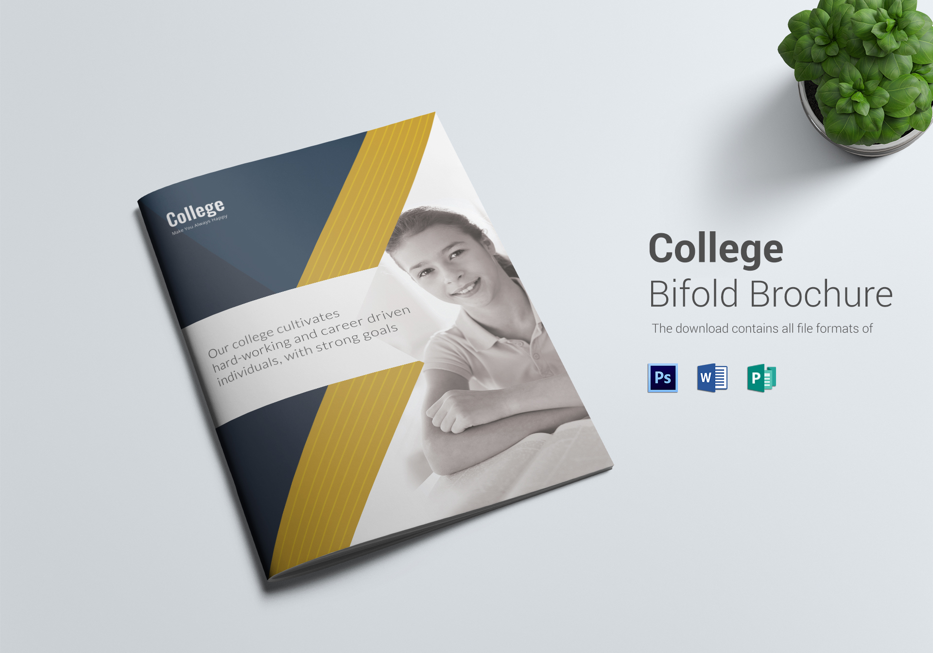 College brochure design template in word psd publisher for College brochure design pdf