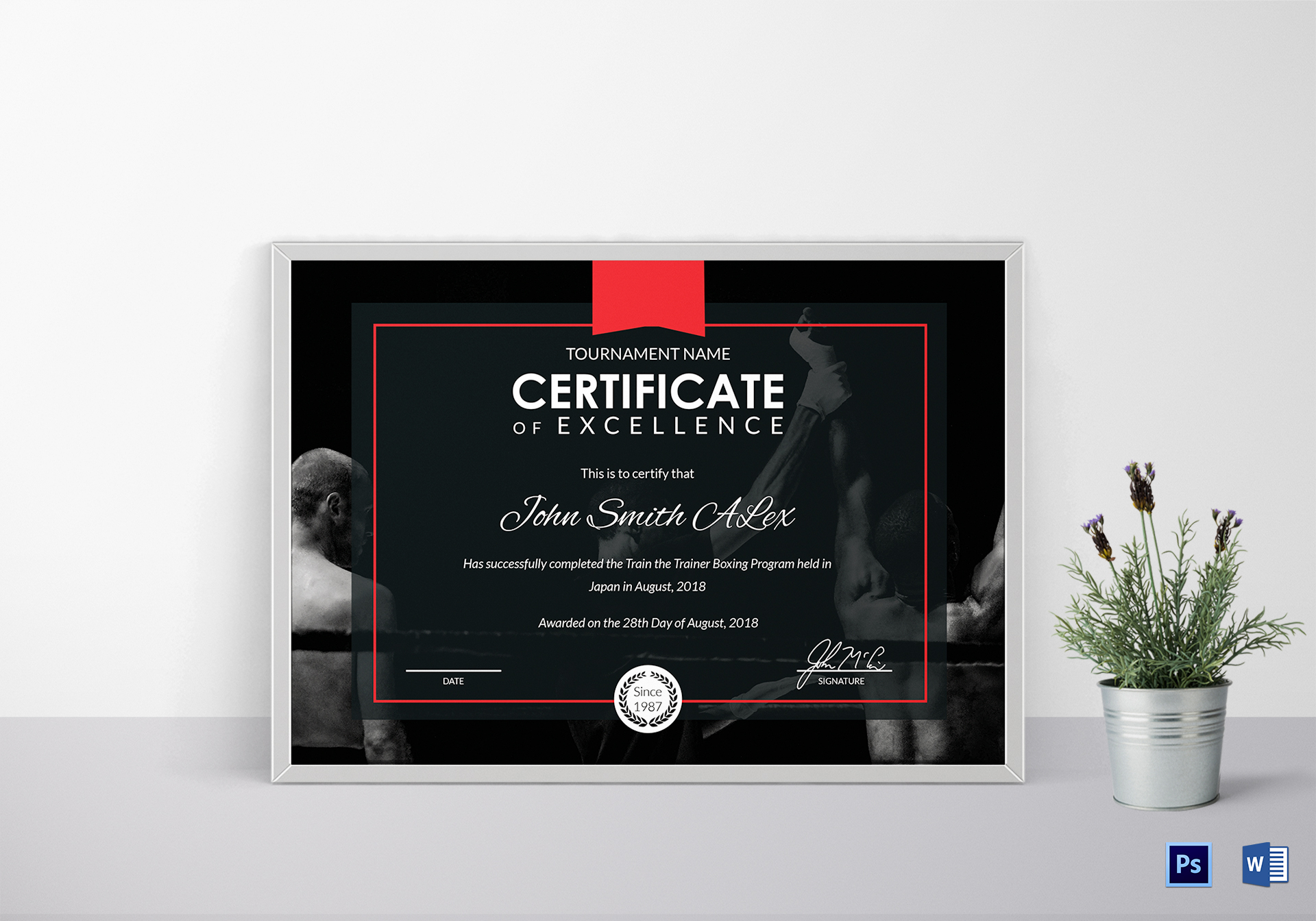Certificate of Boxing