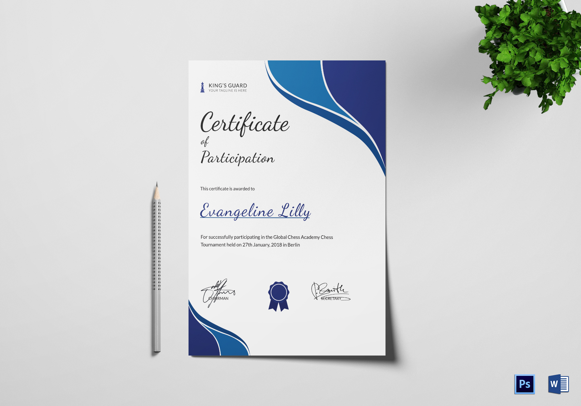 Chess Participation Certificate
