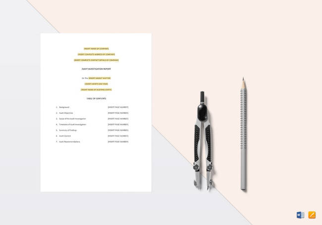 Audit Investigation Report Template