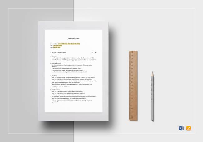 Management-Audit-Checklist1